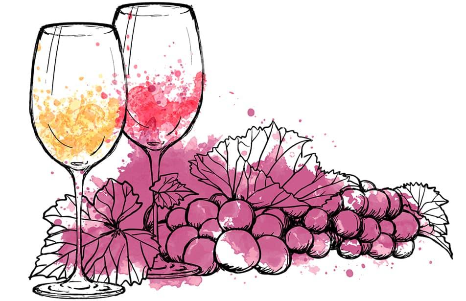 Vegan-Wines-Online-Shop (1)